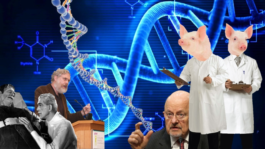 2016-06-12-dna-genetics